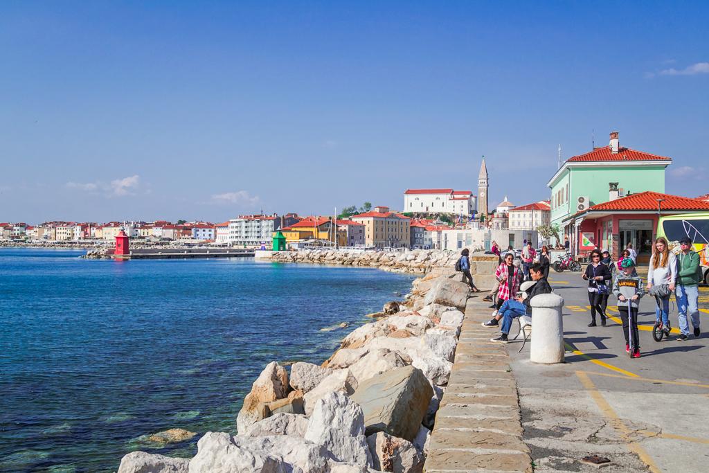 Пиран, порт города и вид