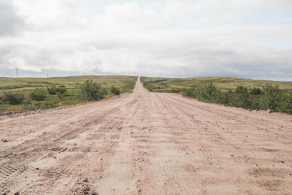 Дикая природа русского севера