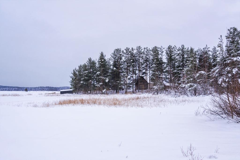Финляндия. Разочарование года