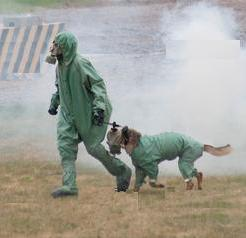 Военный кинолог с собакой в костюмах химзащиты преодолевают задымление