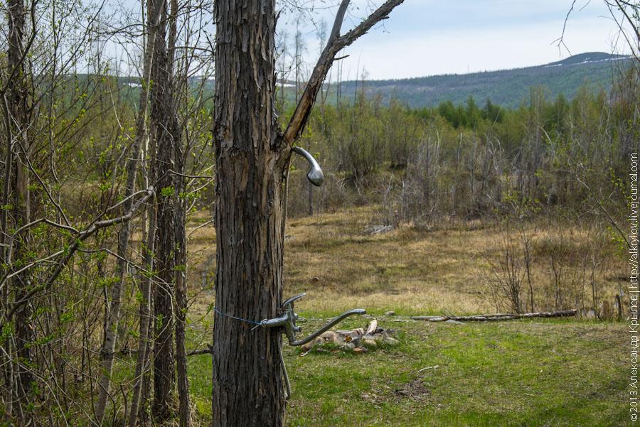 душ в лесу