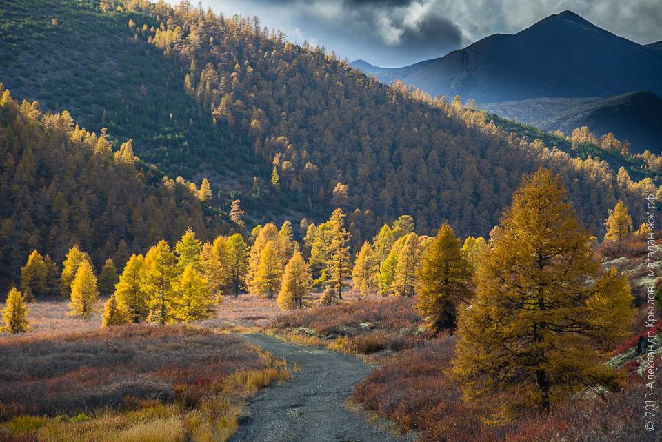 Осень в Магадане. Фото: Александр Крылов