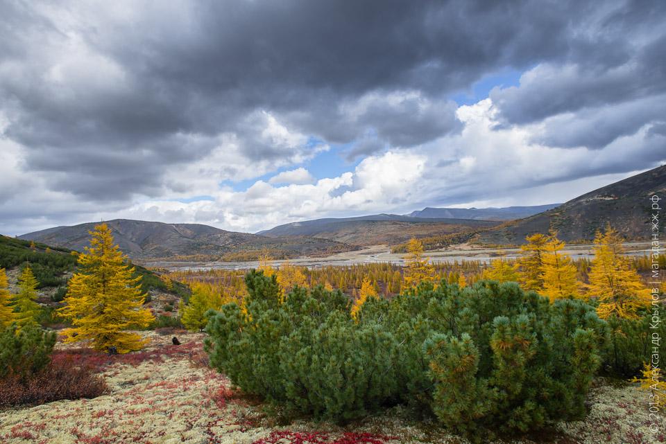Природа Магадана, фото: Александр Крылов