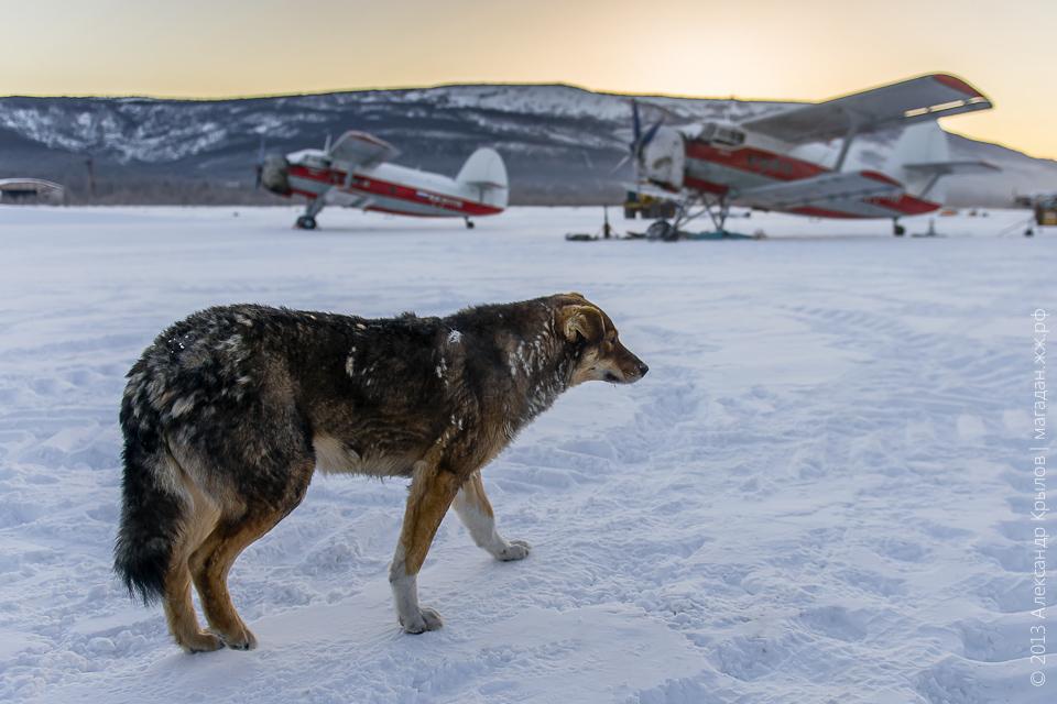 Аэропорт Магадан-13. Магадан, декабрь 2013