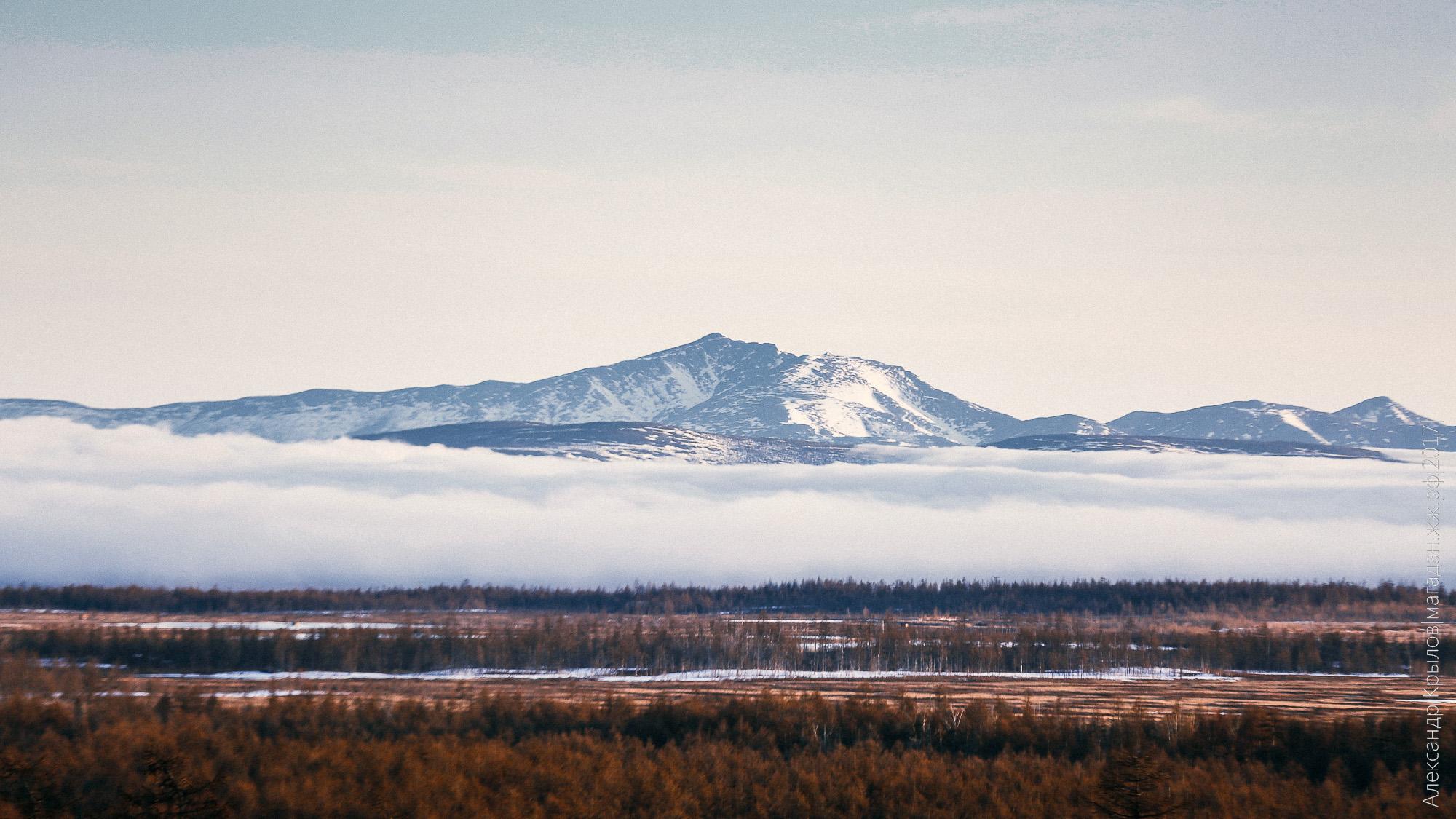 Сокол, долина реки Хасын, Александр Крылов