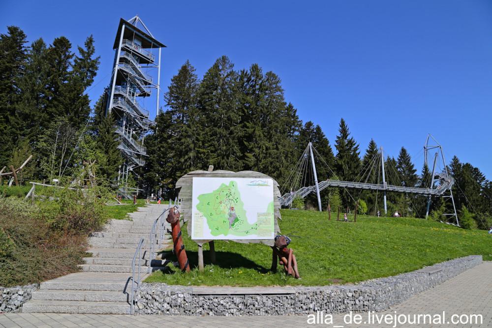 3 IMG_2631 3 scheidegg. skywalk allgäu Scheidegg. Skywalk Allgäu 124535 1000