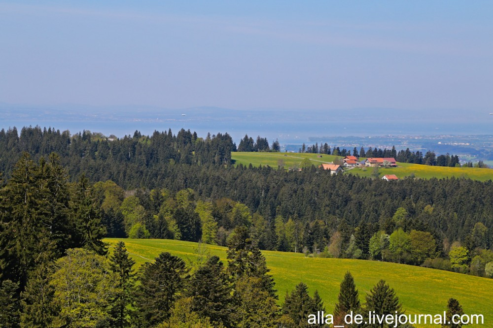 22 IMG_2678 22 scheidegg. skywalk allgäu Scheidegg. Skywalk Allgäu 129534 1000