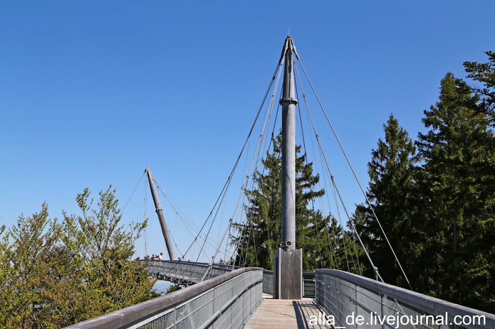 36 IMG_2690 scheidegg. skywalk allgäu Scheidegg. Skywalk Allgäu 133031 1000