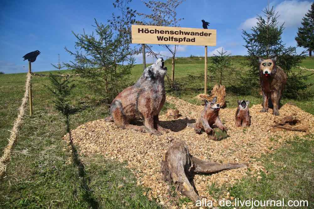 19 IMG_0065 Wolfsfamilie