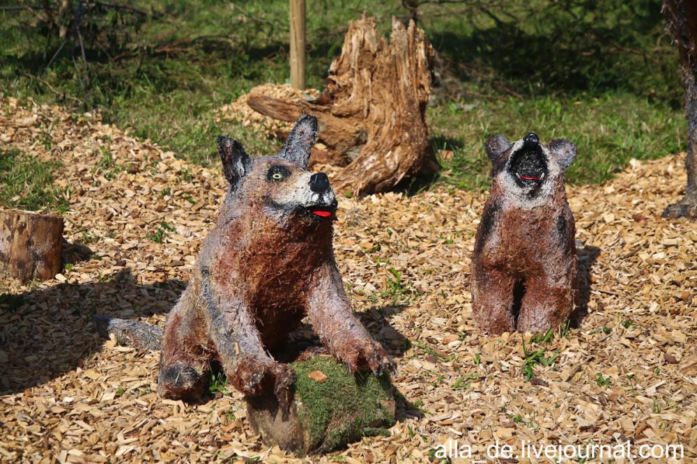 21 IMG_0066 Wolfsfamilie