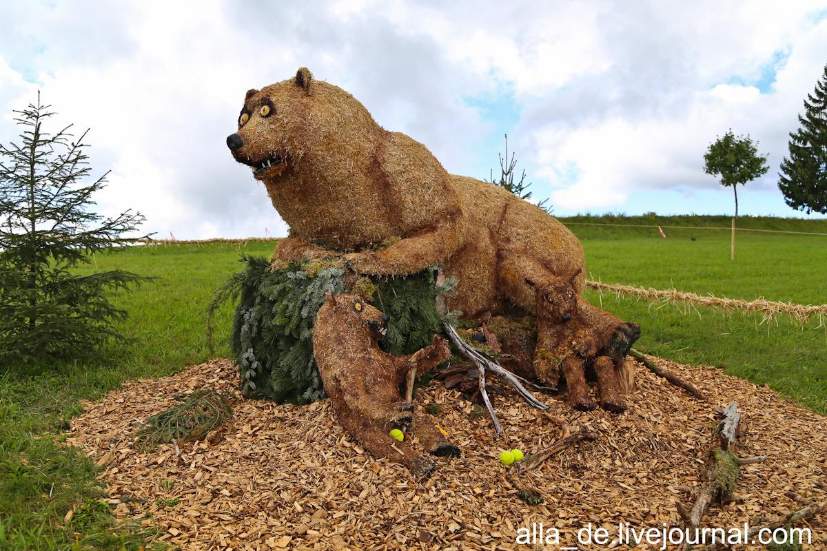 10 IMG_4940 Bären