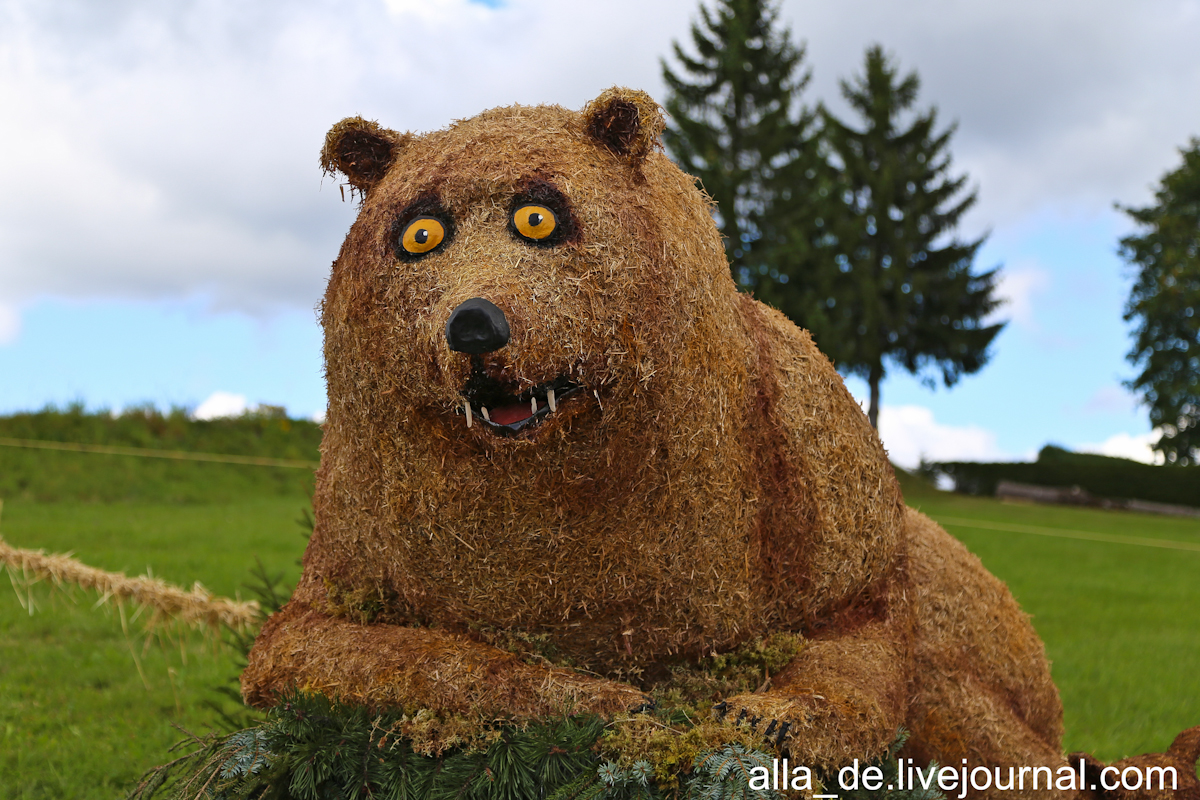 11 IMG_4941 Bären