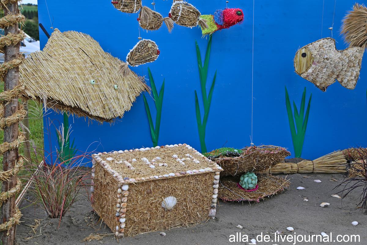 27 IMG_4996 Aquariumh