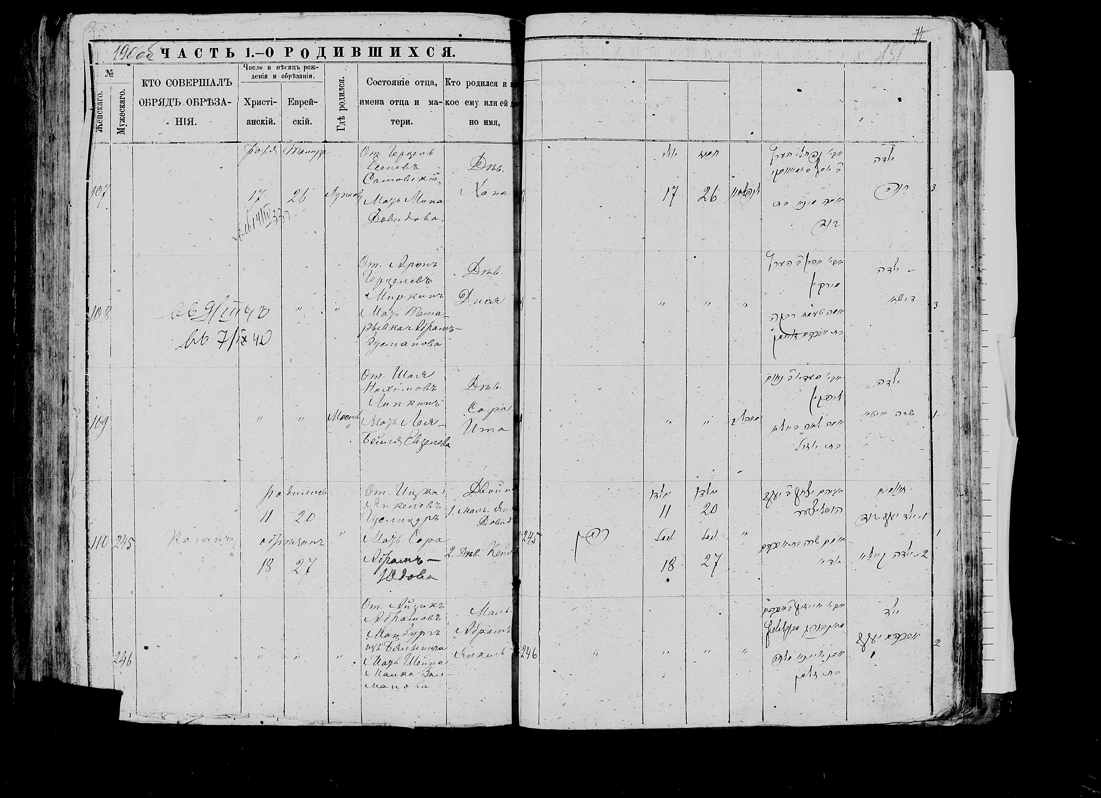 Дися Ароновна Миркина 17 июля 1886, запись 108, пленка 007766483, снимок 568