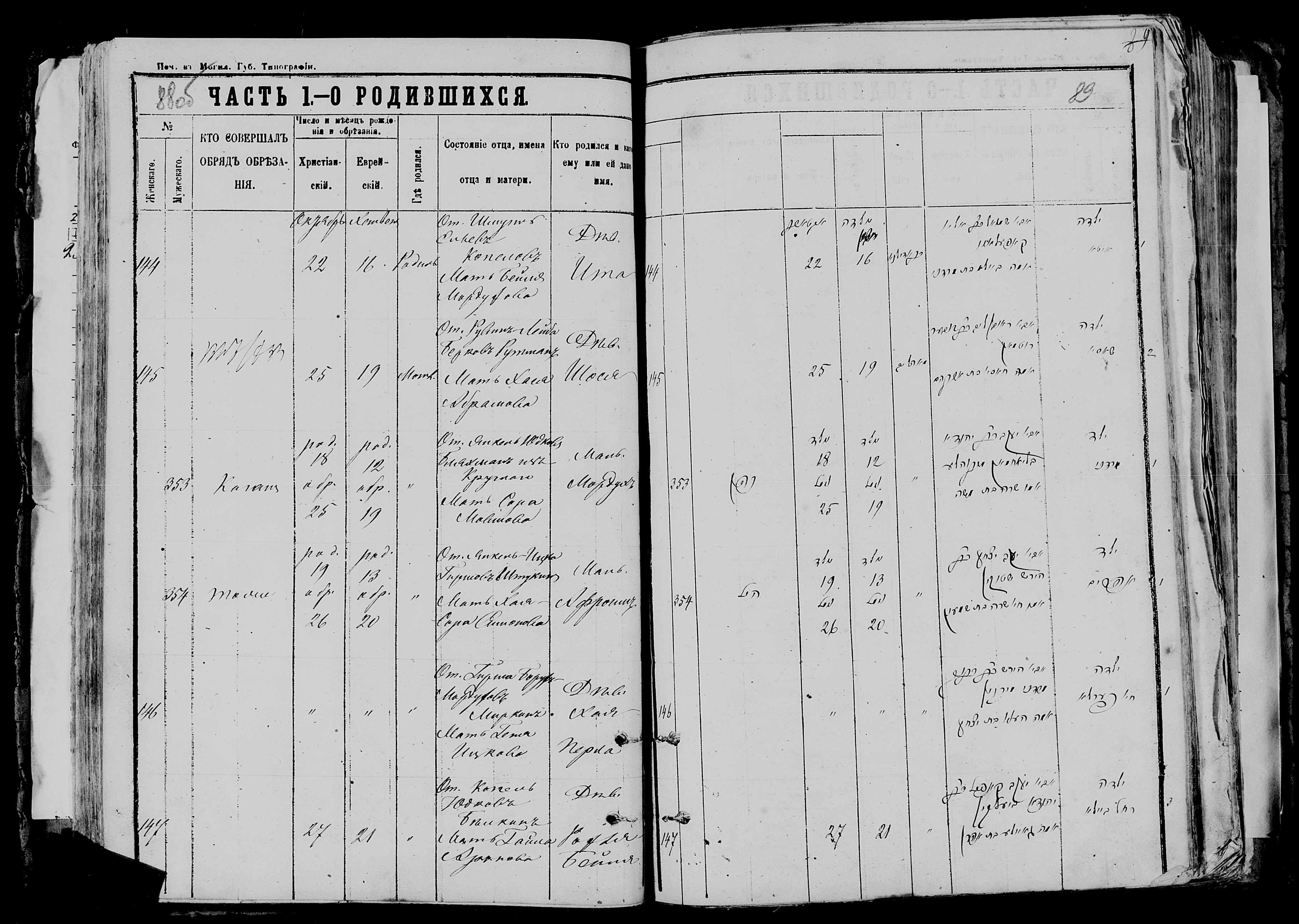 Хая-Перла Гершевна Миркина 26 октября 1876, запись 146, пленка 007766481, снимок 636