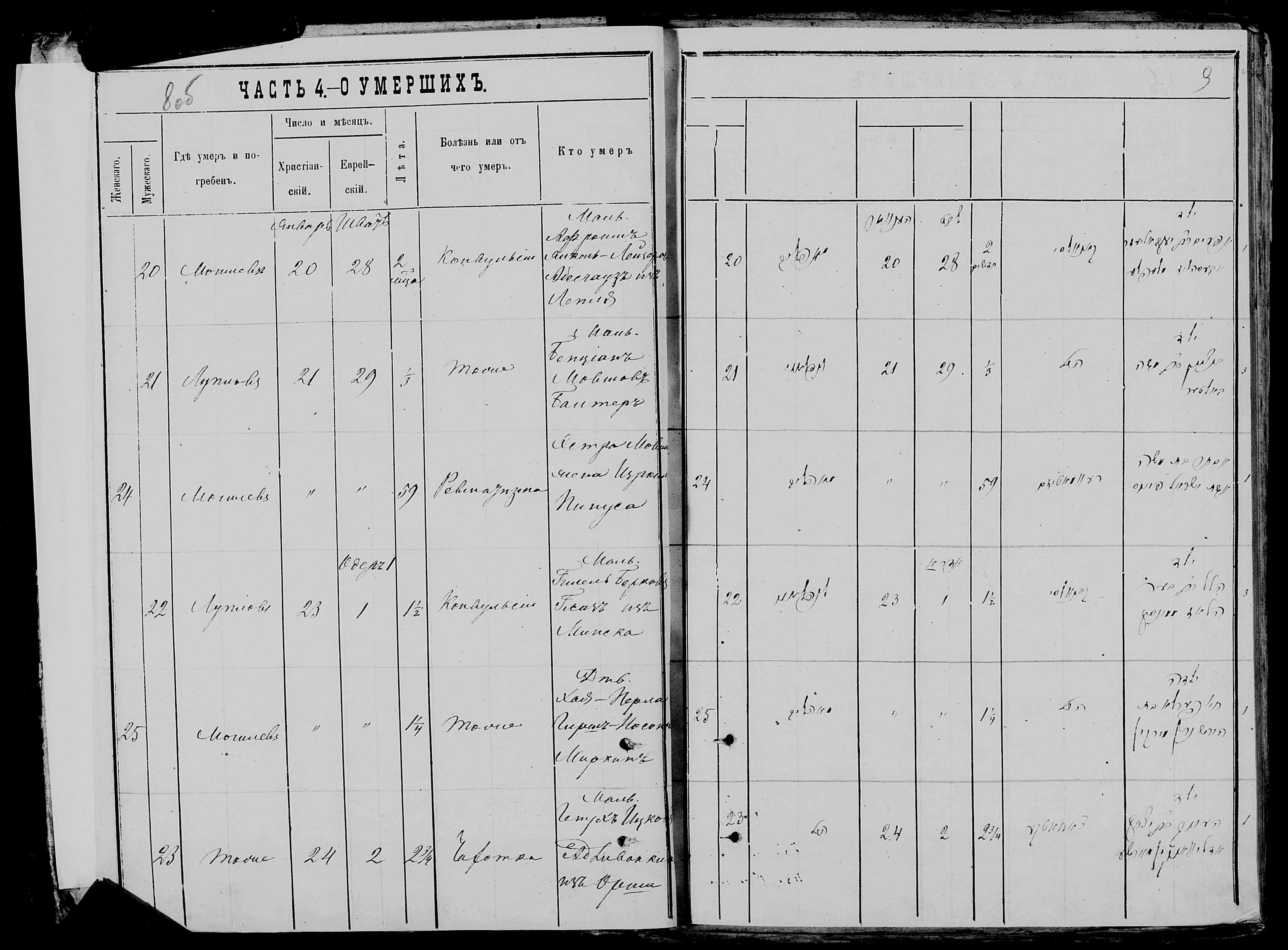 Хая-Перла Гирш-Носоновна Миркина 23 января 1878, запись 25, пленка 007766481, снимок 123