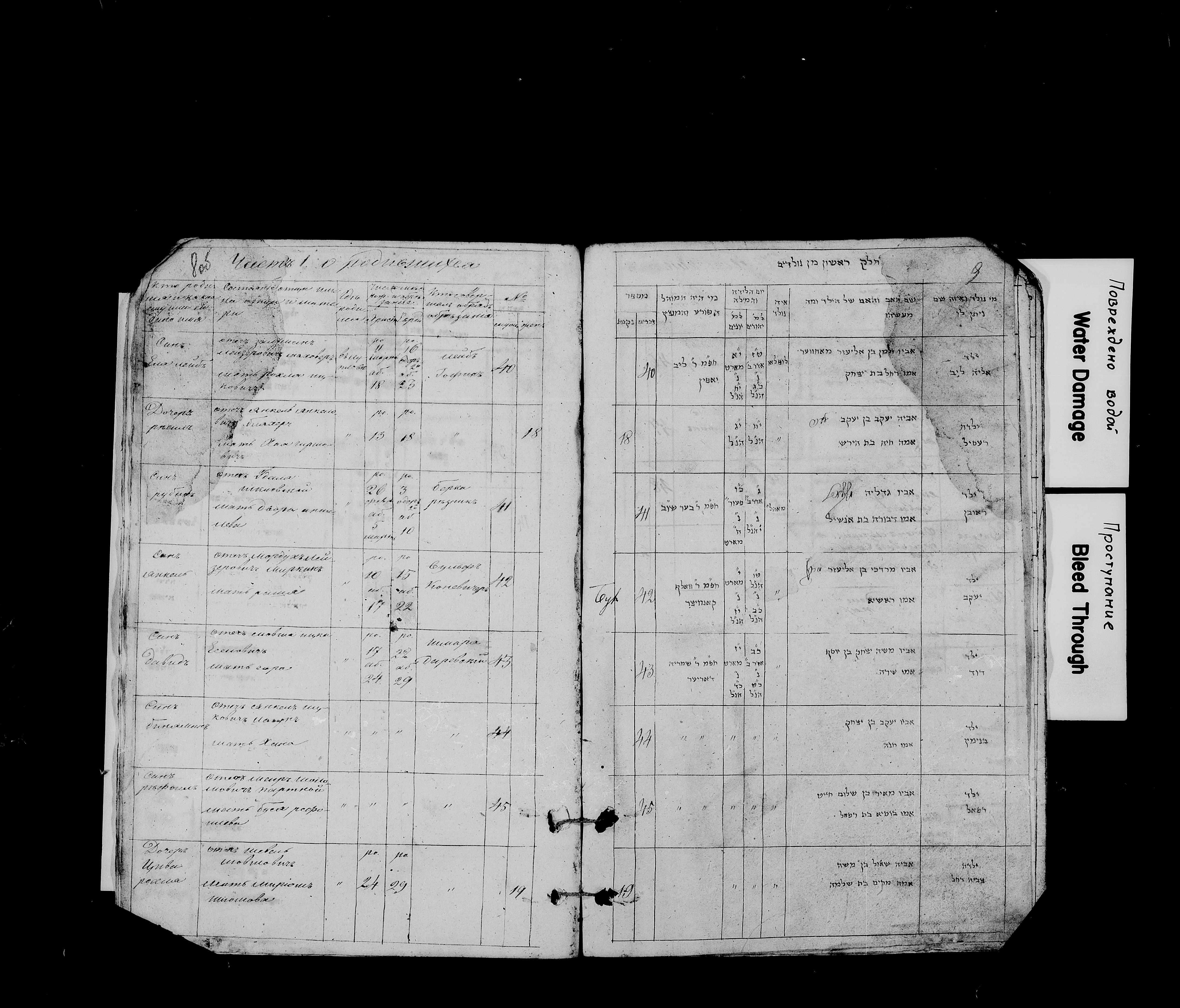 Янкель Миркин 10 марта 1837, запись 42, пленка 007766479, снимок 13