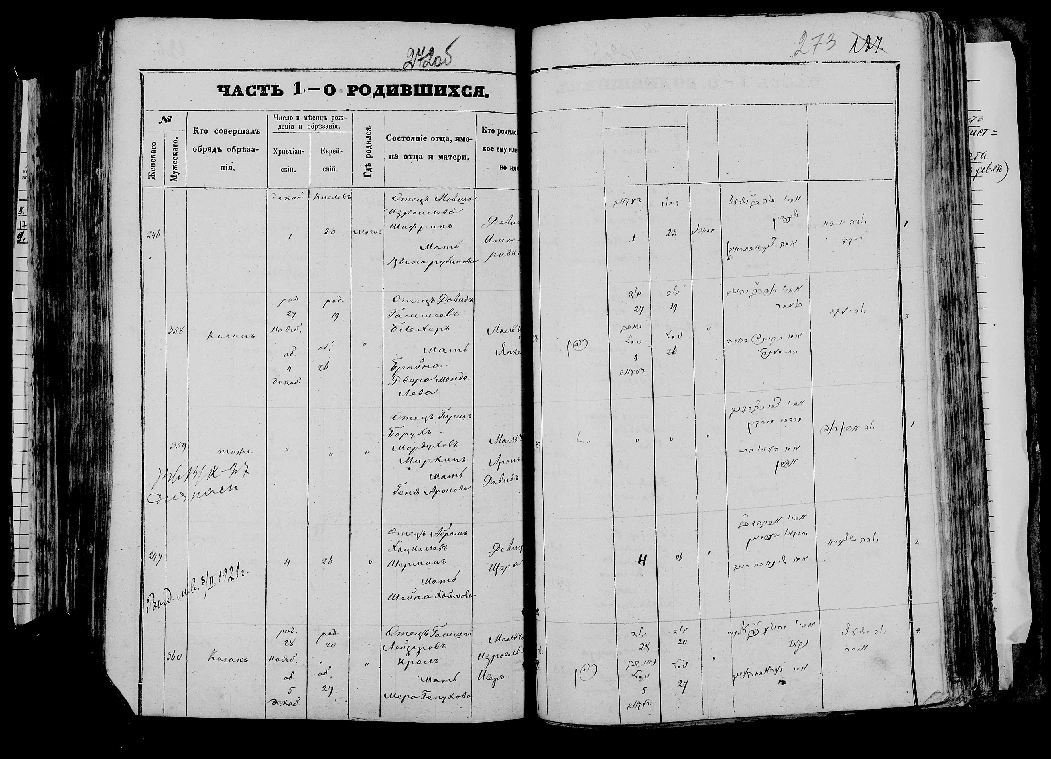 Арон Давид Миркин р. 24 ноября 1873, запись 359, пленка 007766480, снимок 1006