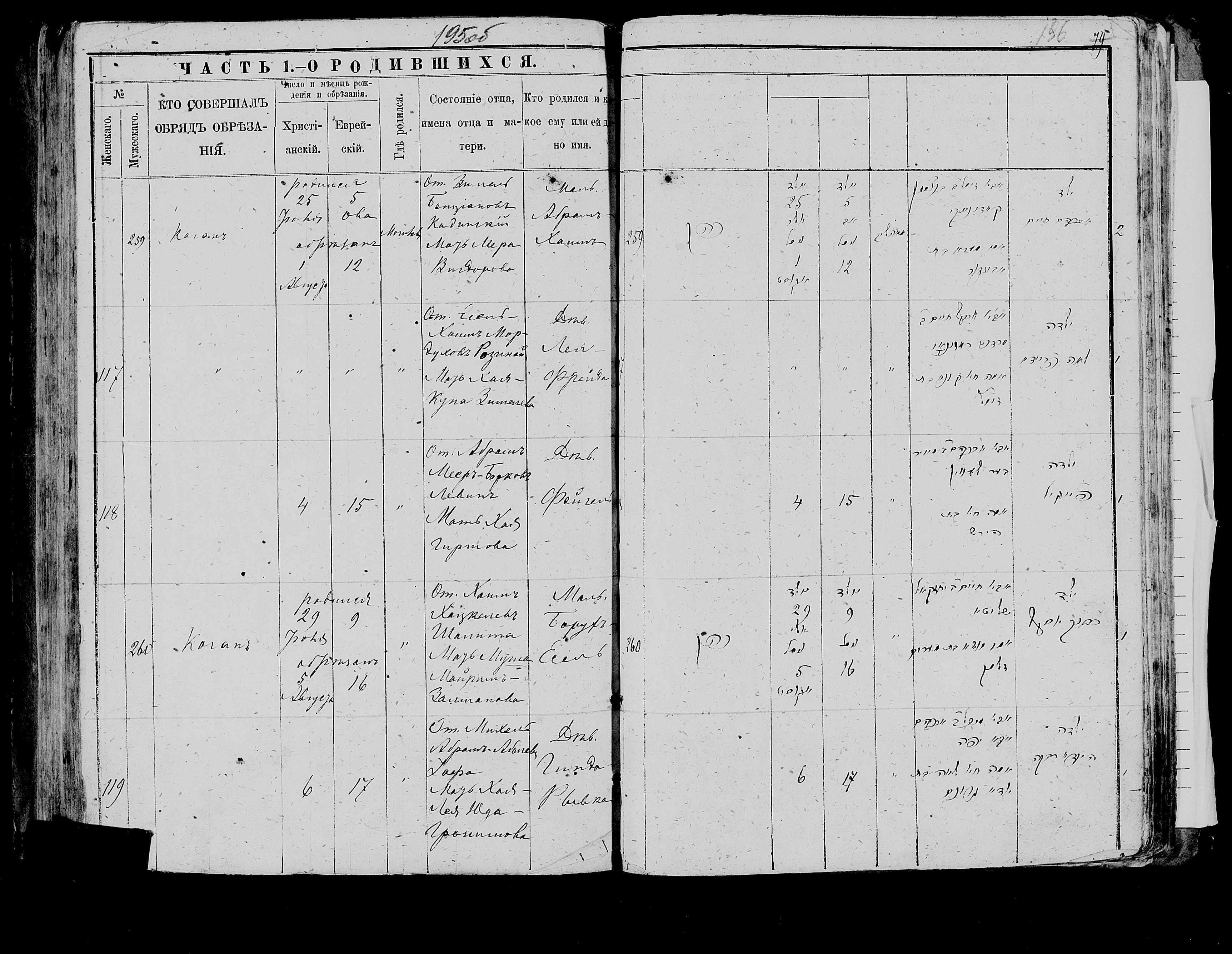 Борух-Есель Шалит 29 июля 1886, запись 260, пленка 007766483, снимок 573