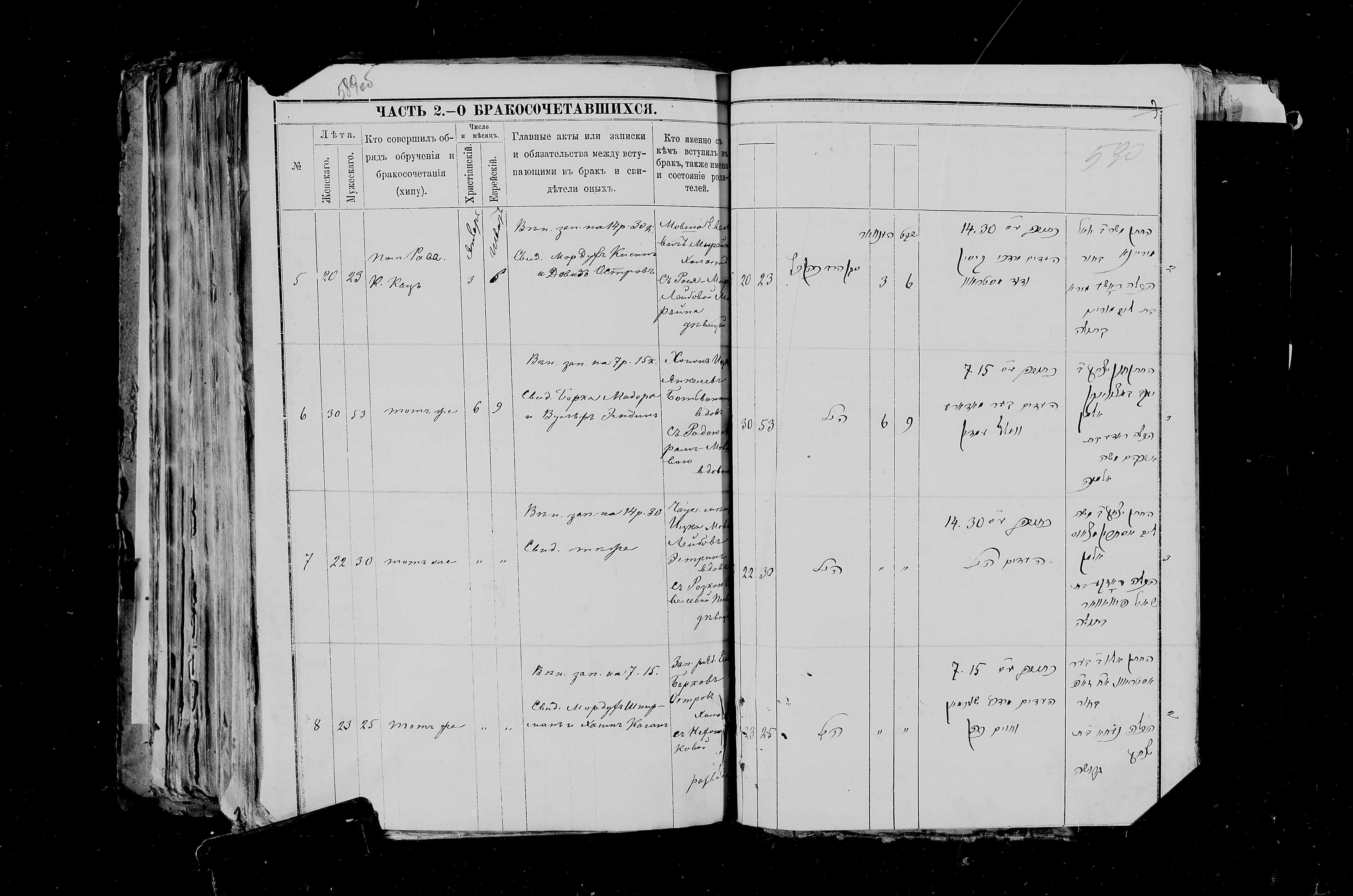 Елья Остров с Нехамой Ицковной 6 января 1891, запись 8, пленка 007766484, снимок 881