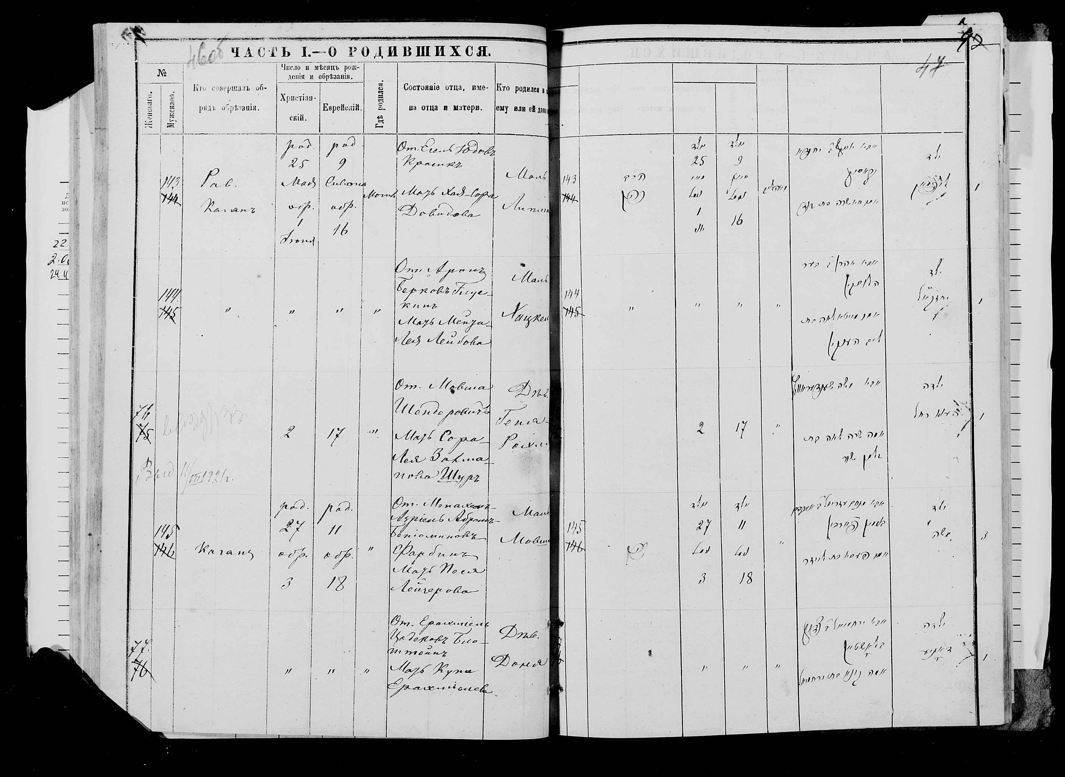Геня-Рохля Шендерович 2 мая 1881, запись 76, пленка 007766482, снимок 551