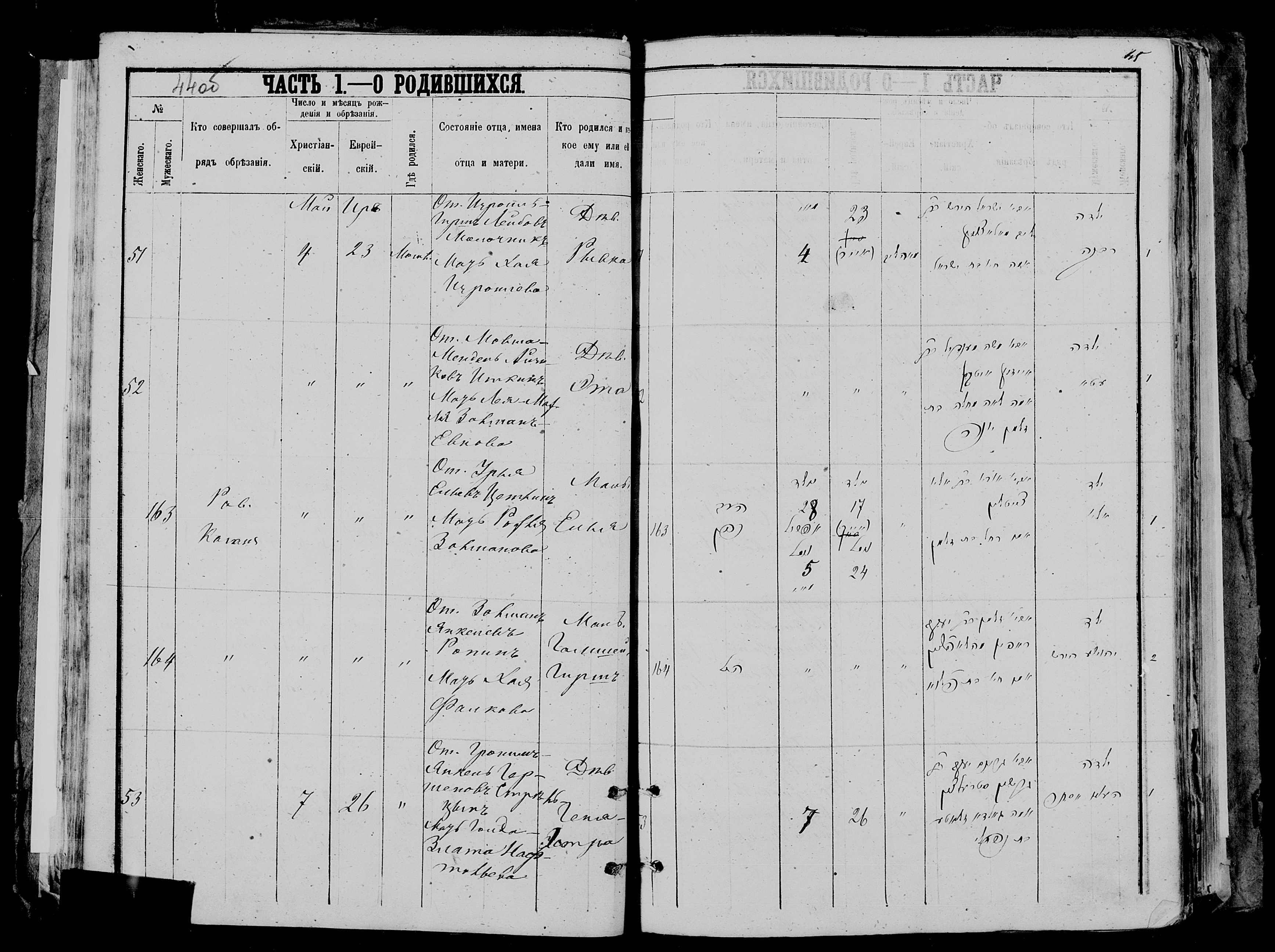 Геня-Эстра Гроним-Янкелевна Стрельцына 7 мая 1879, запись 53, пленка 007766481, снимок 932