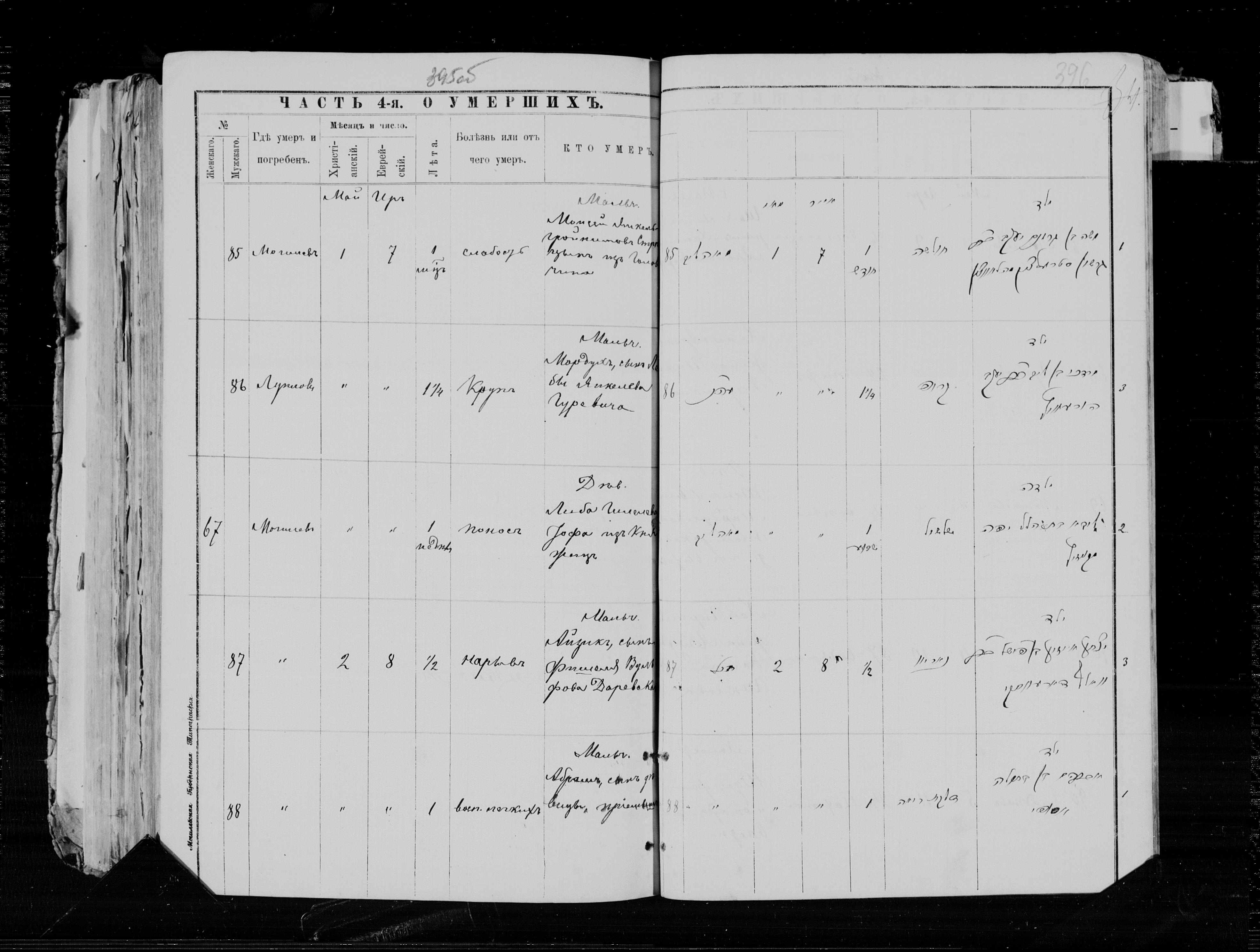 Моисей Янкель-Гронимович Стрельцын ум. 1 мая 1894, запись 85, пленка 004563097, снимок 920