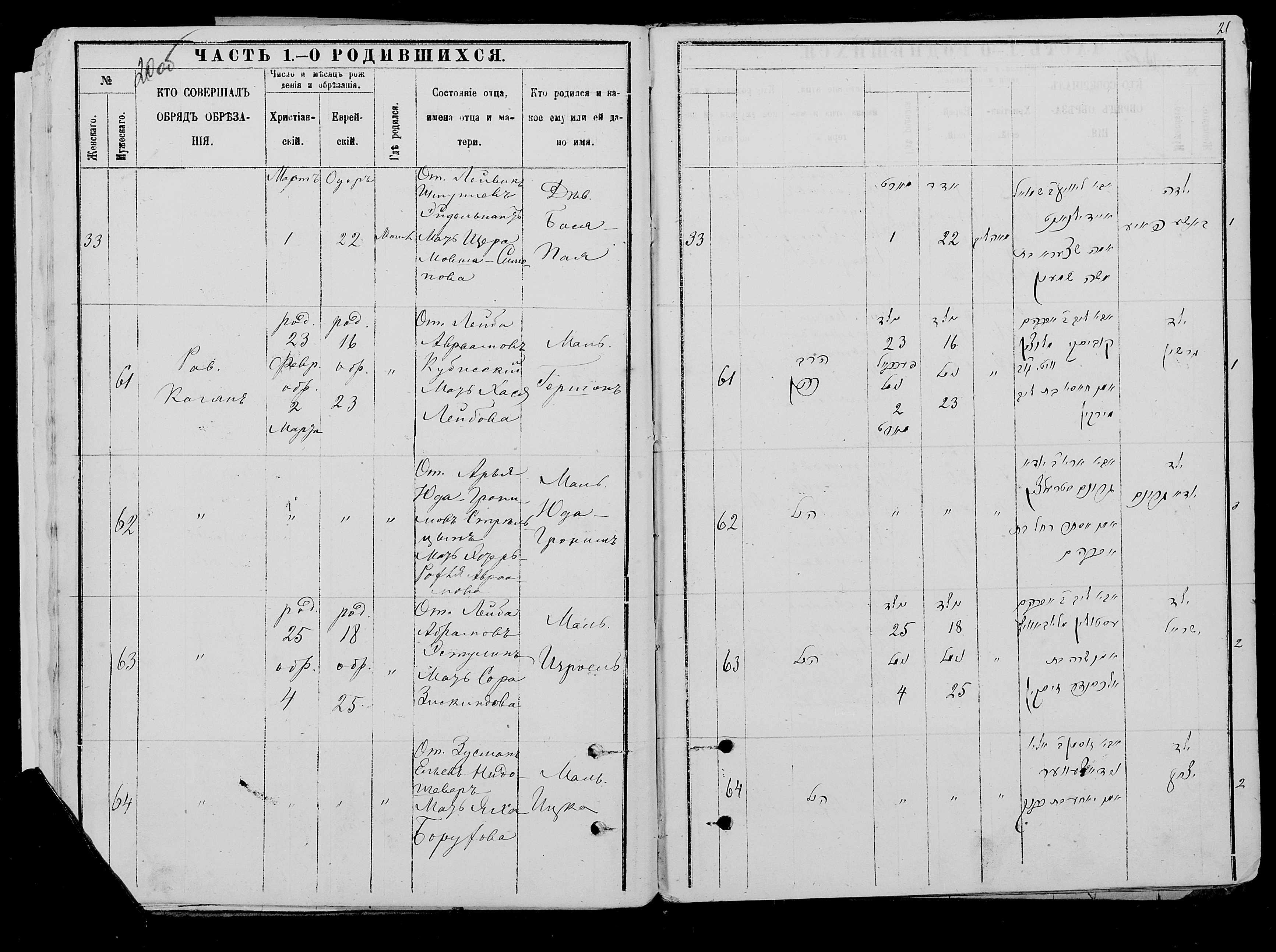 Юда-Гроним Стрельцын 23 февраля 1882, запись 62, пленка 007766482, снимок 639