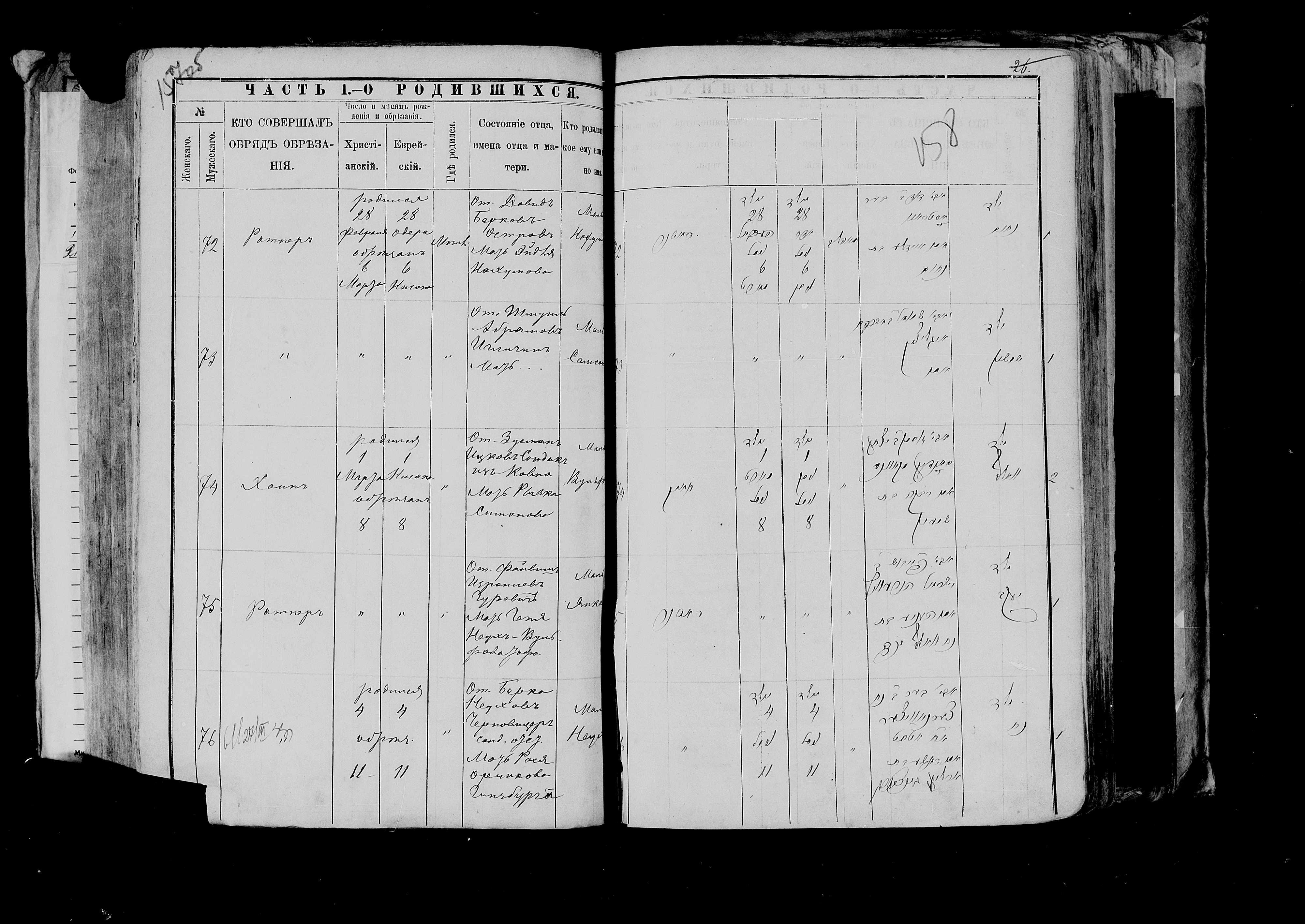 Нохум Остров 28 февраля 1888, запись 72, пленка 007766483, снимок 1012