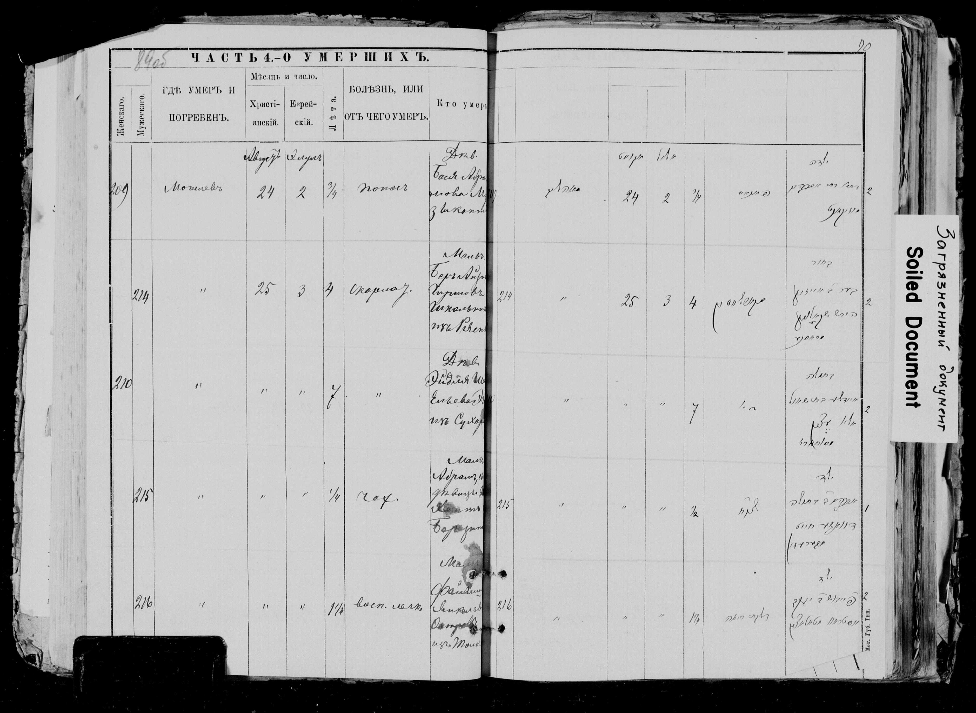 Фейвел Остров ум. 25 августа 1891, запись 216, пленка 0045463097, снимок 607