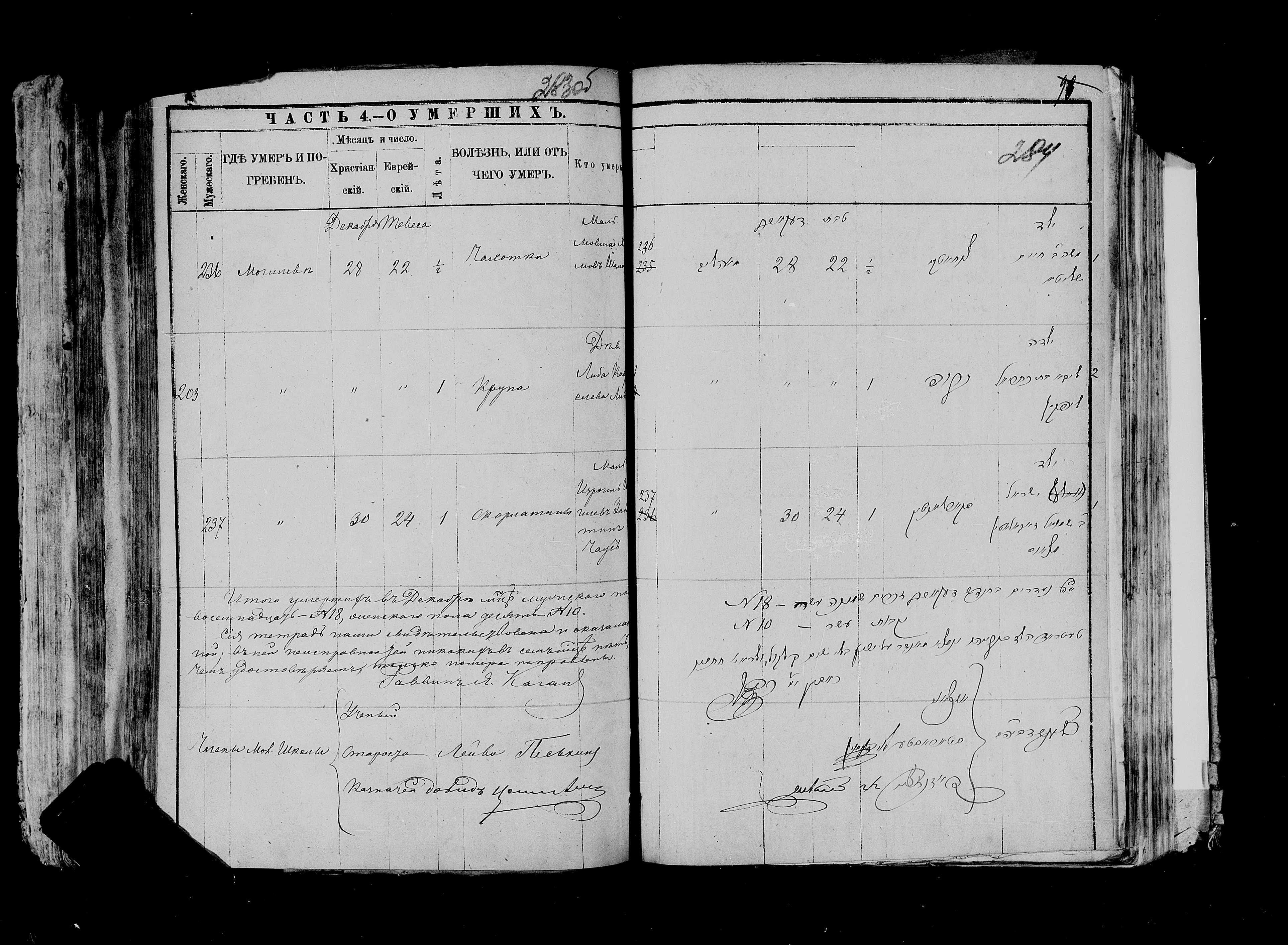 Мовша Шалита ум. 28 декабря 1884, запись 236, пленка 007766483, снимок 6