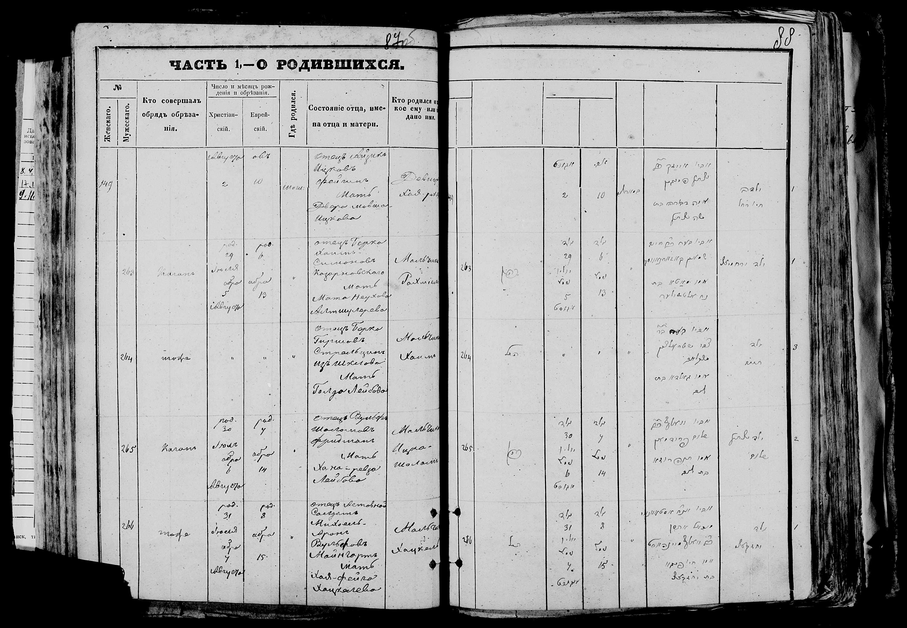 Хаим Боркович Стрельцын 29 июля 1872, запись 264, пленка 007766480, снимок 814