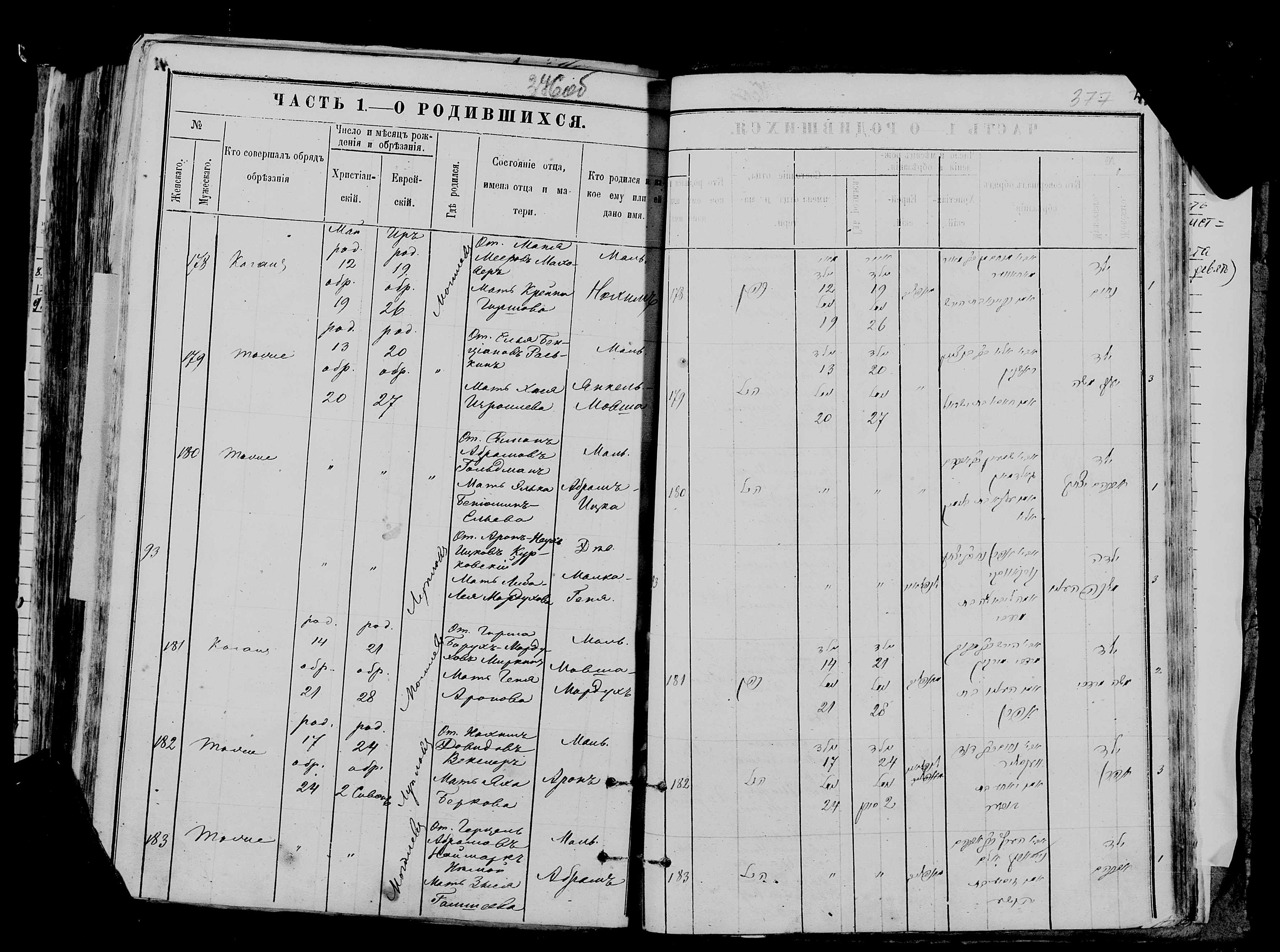 Мовша-Мордух Гиршенович Миркин 14 мая 1875, запись 181, пленка 007766481, снимок 49