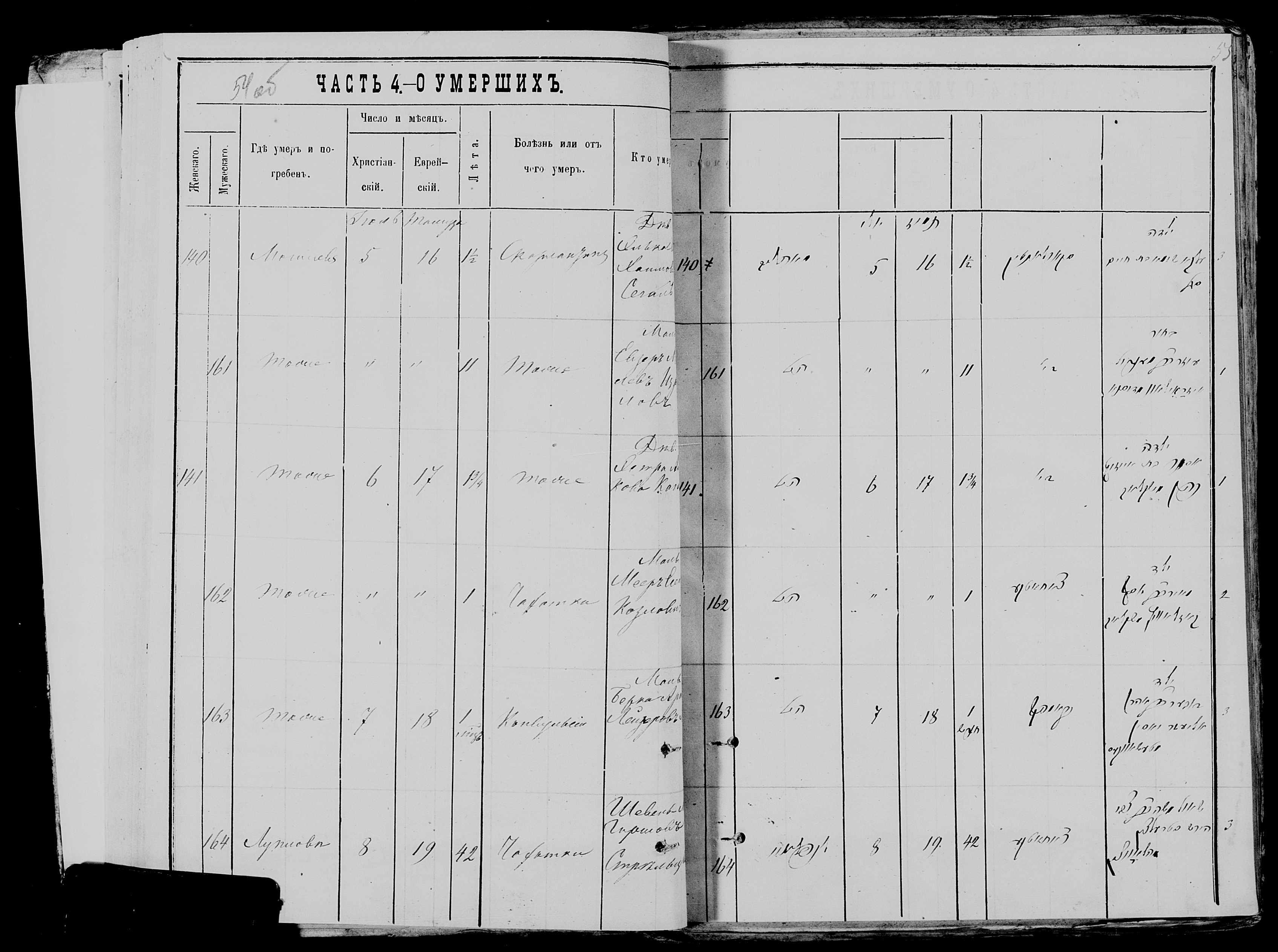 Шевиль Гиршенович Стрельцын ум. 8 июля 1878, запись 164, пленка 117766481, снимок 171