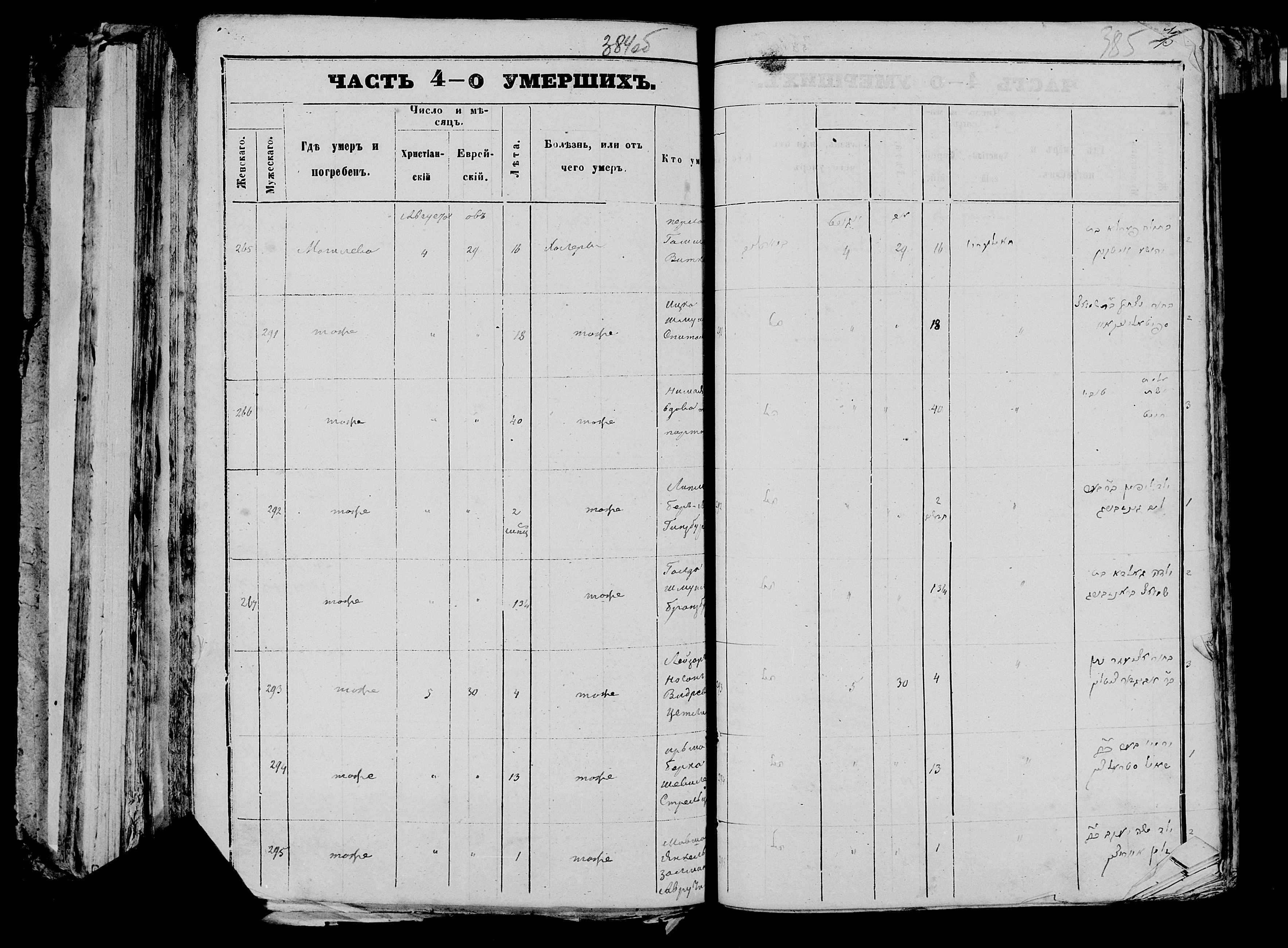 Ирьма-Берка Шевелевич Стрельцын ум. 5 августа 1871, запись 294, пленка 007766480, снимок 406