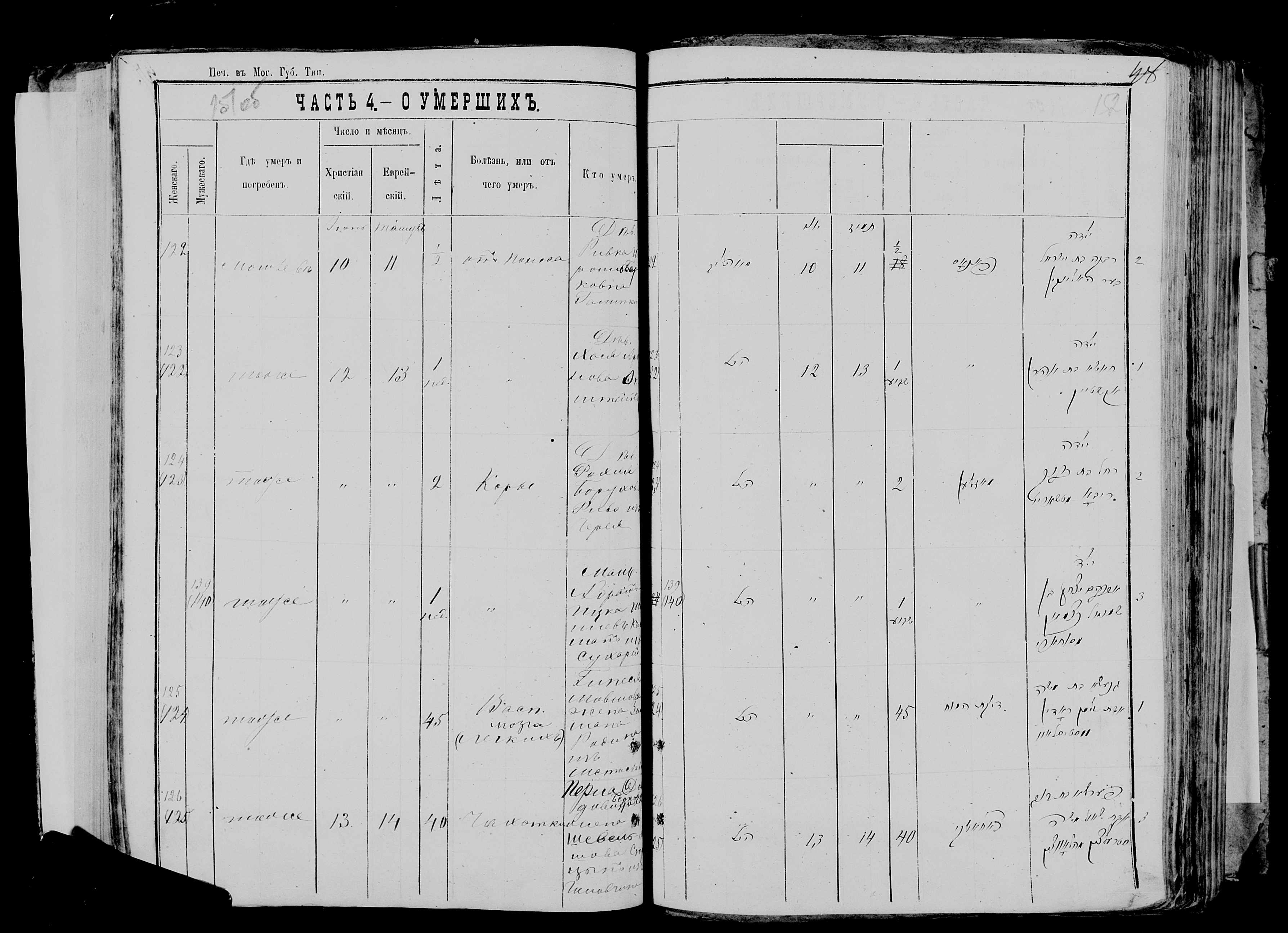 Перла Давидовна жена Шевель-Мовши Стрельцына ум. 13 июня 1877, запись 126, пленка 007766481, снимок 273