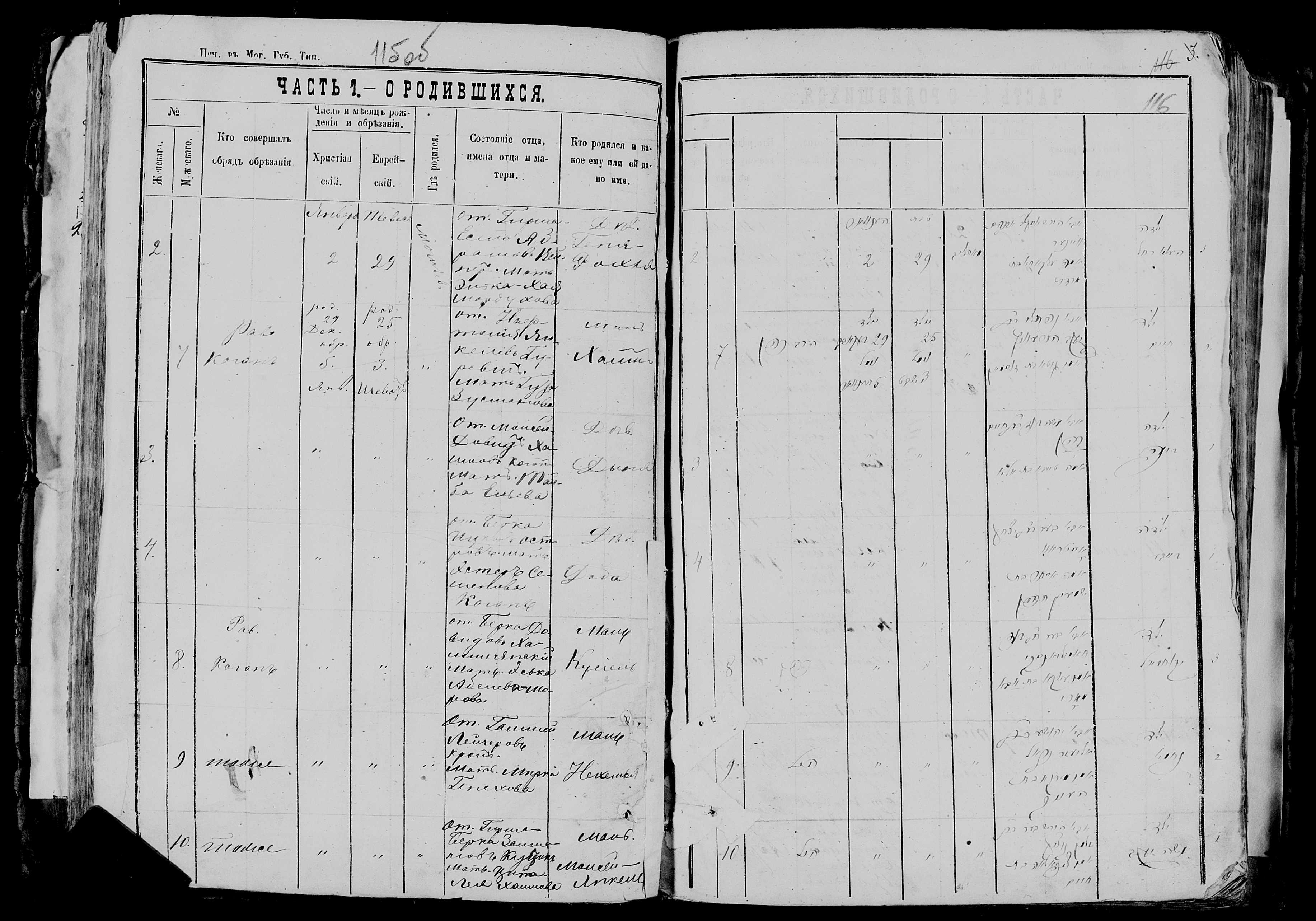 Доба Берковна Острова 5 января 1877, запись 4, пленка 007766481, снимок 663