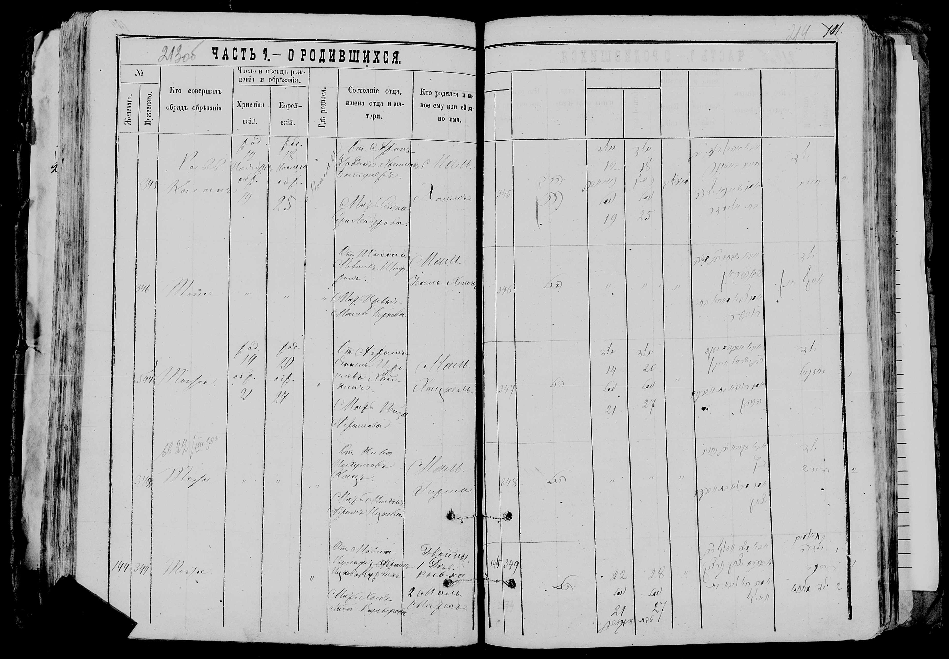 Ривка и Матес Мовша-Вульфовичи Курчики 22 ноября 1877, запись 144 и 349, пленка 007766481, снимок 764