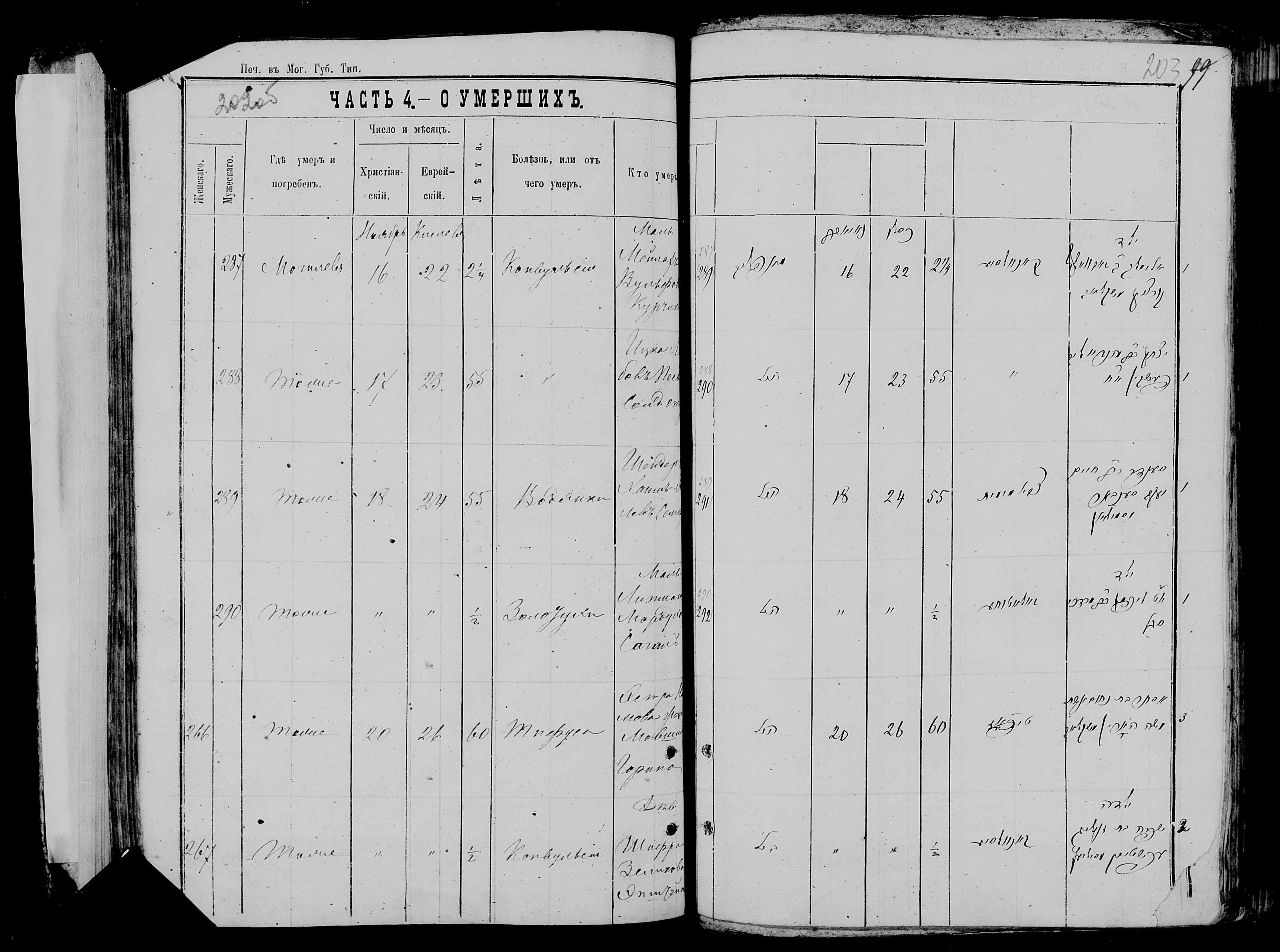Мейлах (Элимелах) Вульфович Курчик ум. 16 ноября 1877, запись 287, пленка 007766481, снимок 328