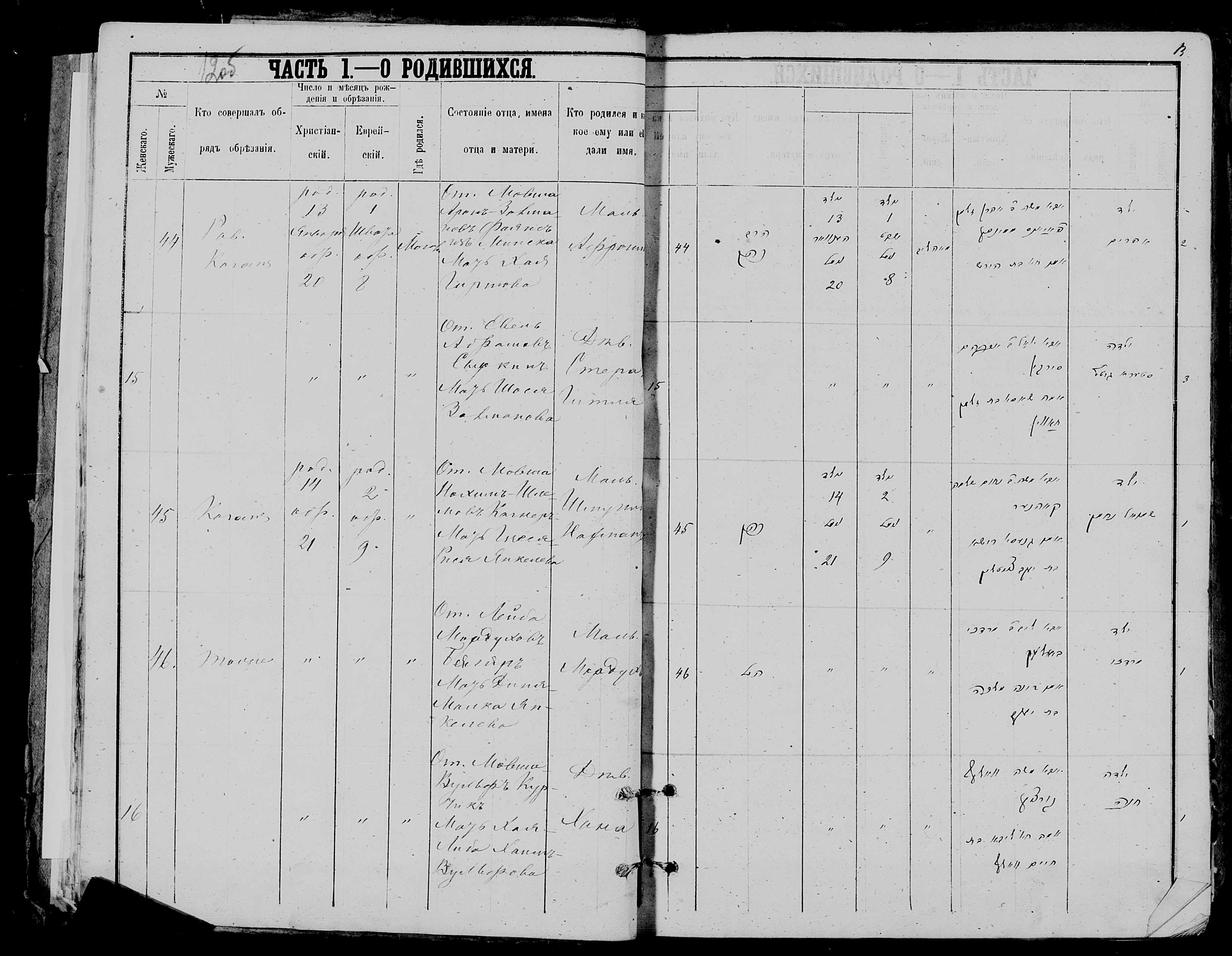 Хана Мовша-Вульфовна Курчик 21 января 1879, запись 16, пленка 007766481, снимок 900