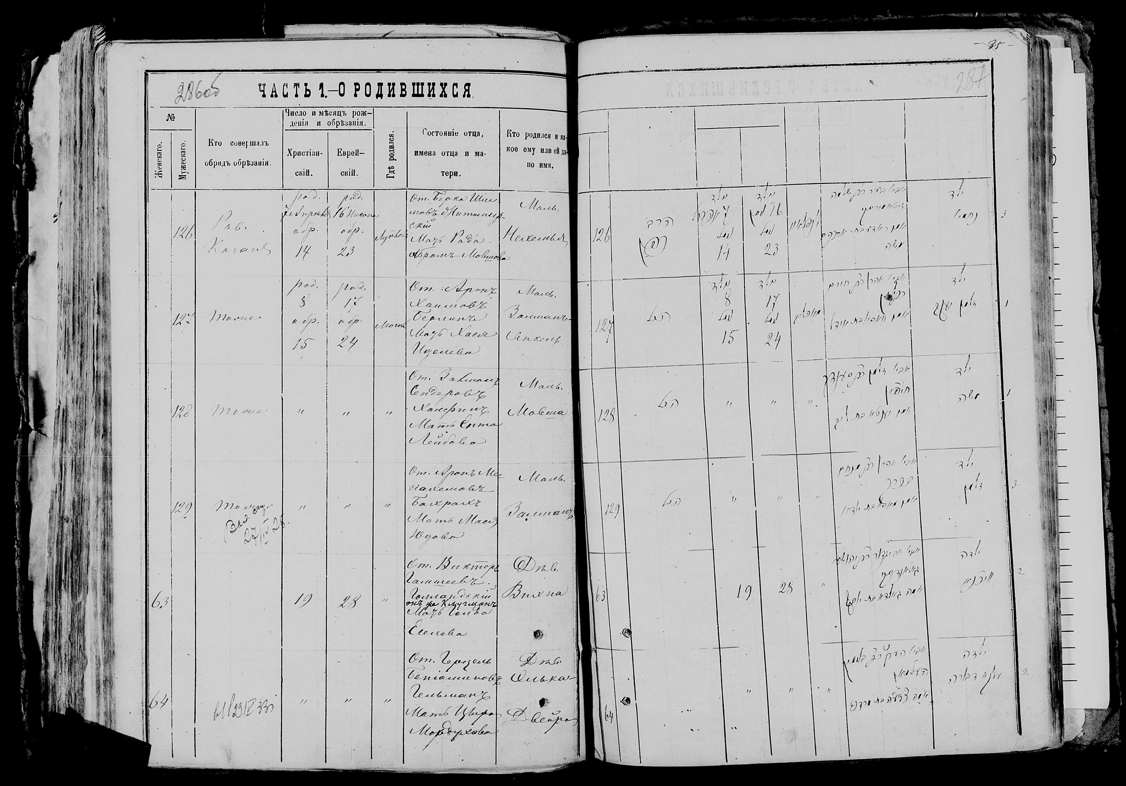 Нехемия Беркович Житомирский 7 апреля 1878, запись 126, пленка 007766481, снимок 816