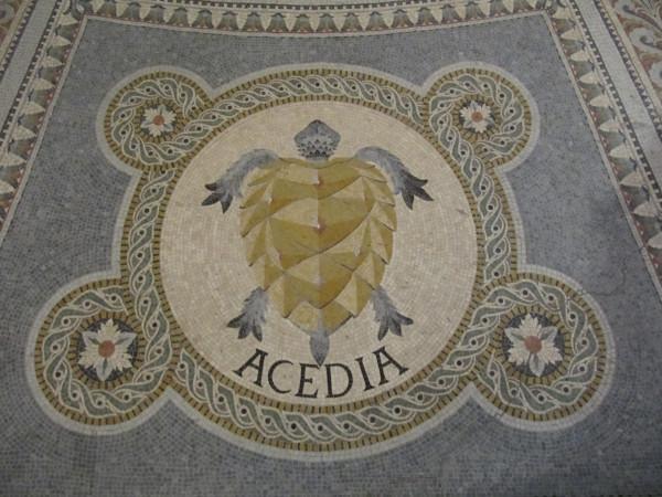 Mosaic Acedia