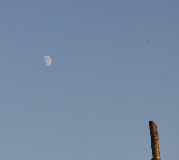 луна2Вэб