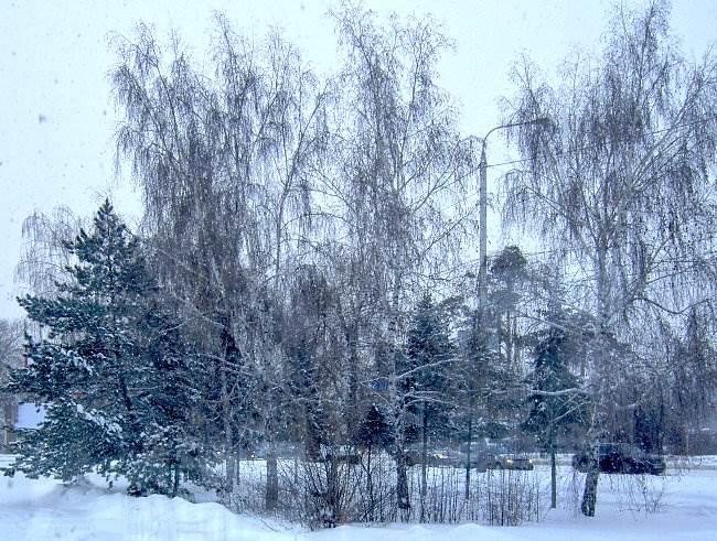 снег3Вэб
