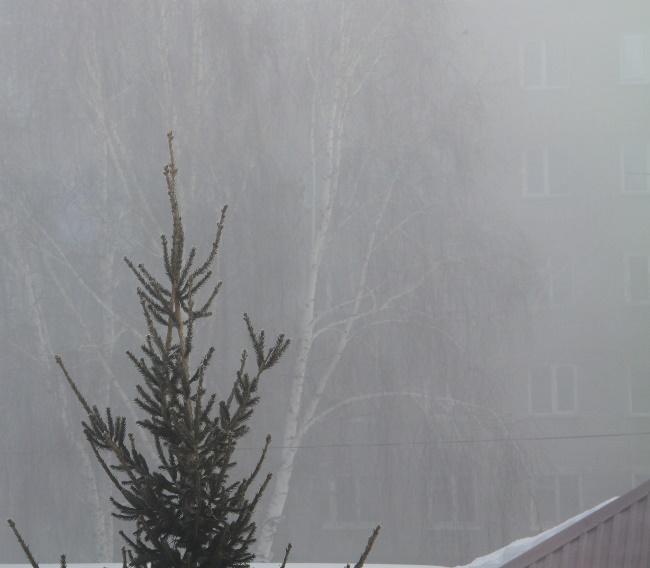 туман2Вэб