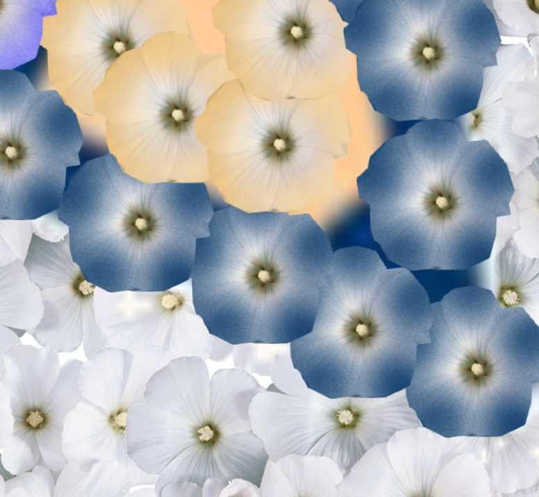 ЦветыЖЖФрагм