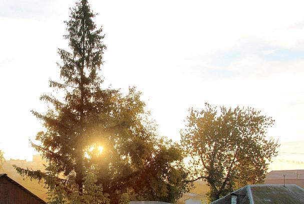 солнце2Вэб