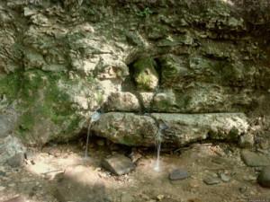 Вода - живой родник