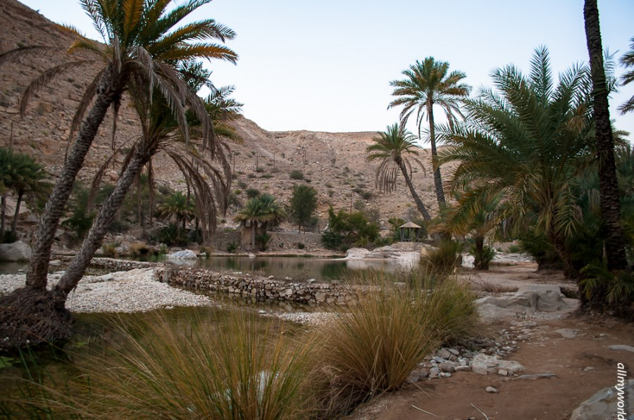 Вади Бани