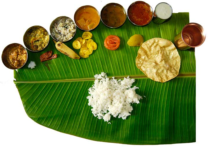 Appetizing food of India